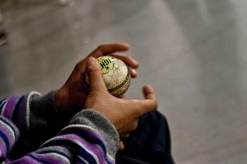 cricket-1551